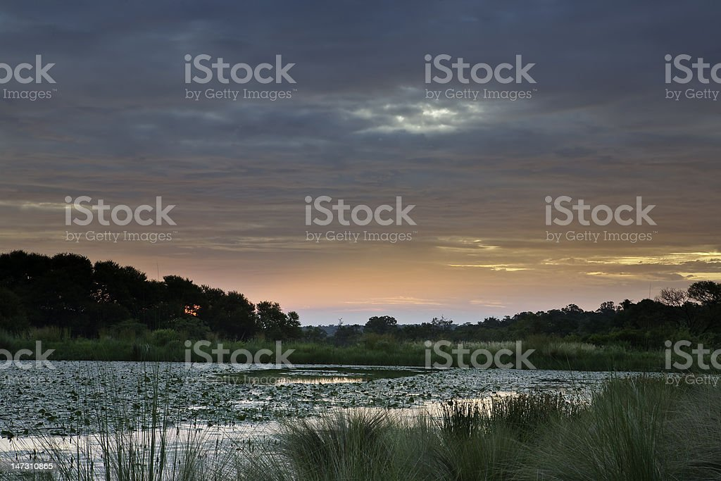 sunset on african pond stock photo