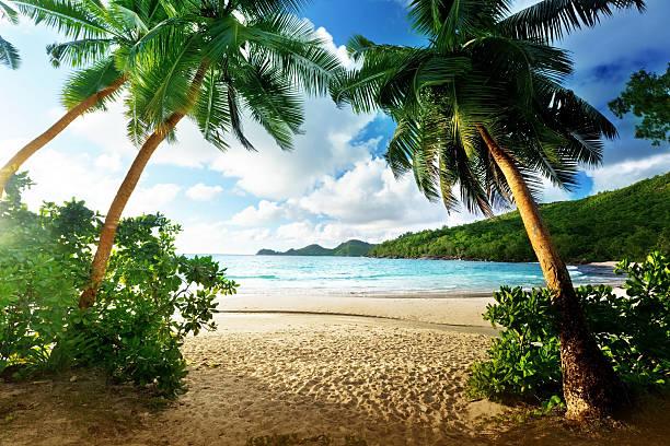 Sonnenuntergang am Strand, Insel Mahe, Seychellen – Foto