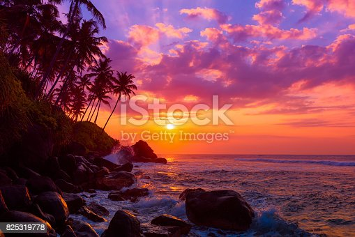 Palm tress on tropical coast at sunset