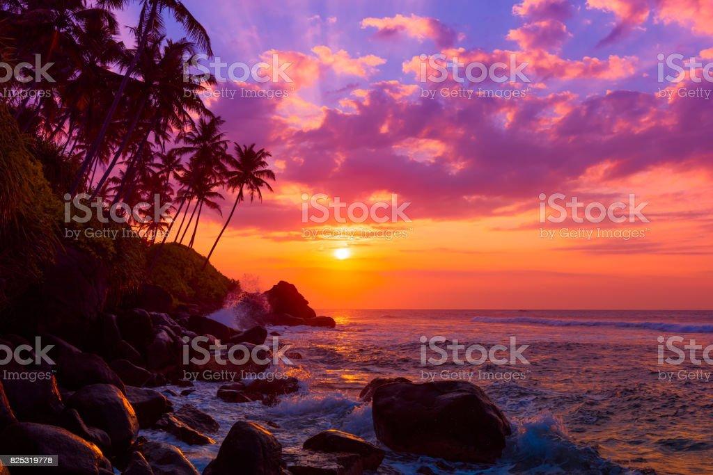 Sunset on beach - fotografia de stock