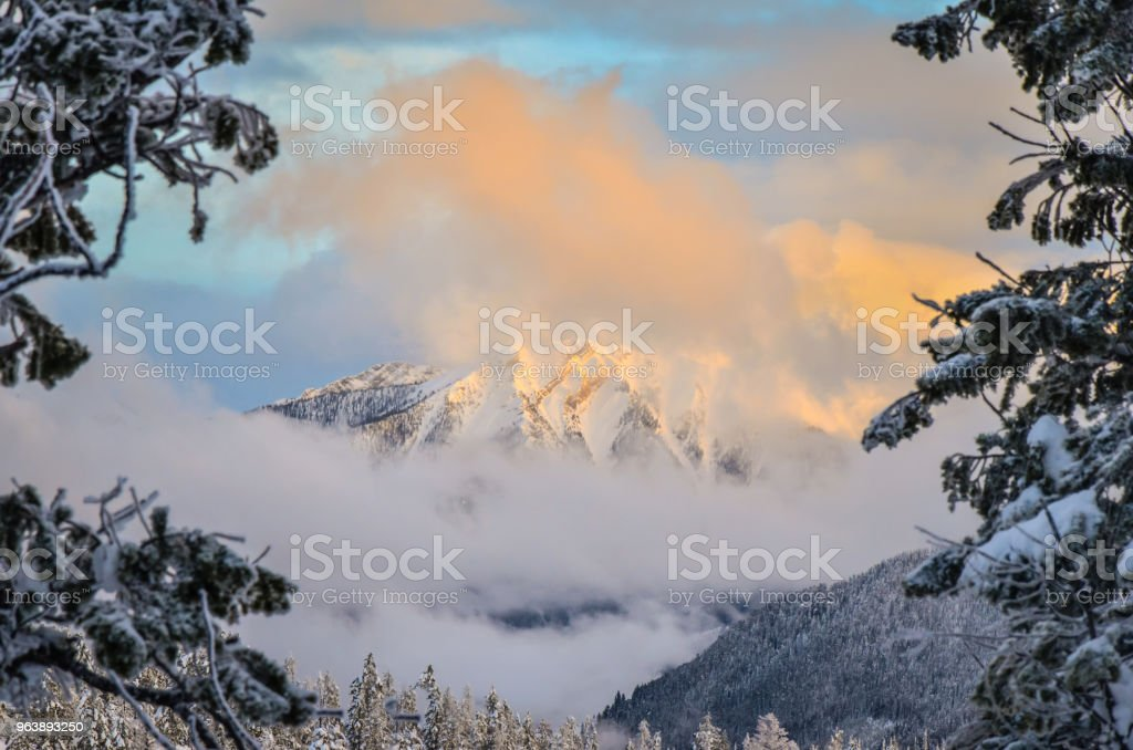 Sunset on Cloudy Mountain Through the Trees Winter - Royalty-free Blue Stock Photo