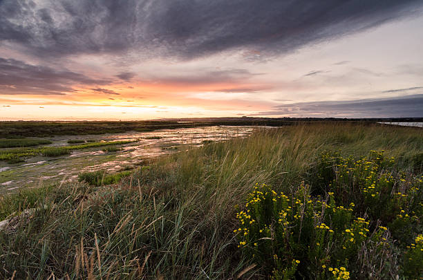 Sunset on Hayling Island stock photo