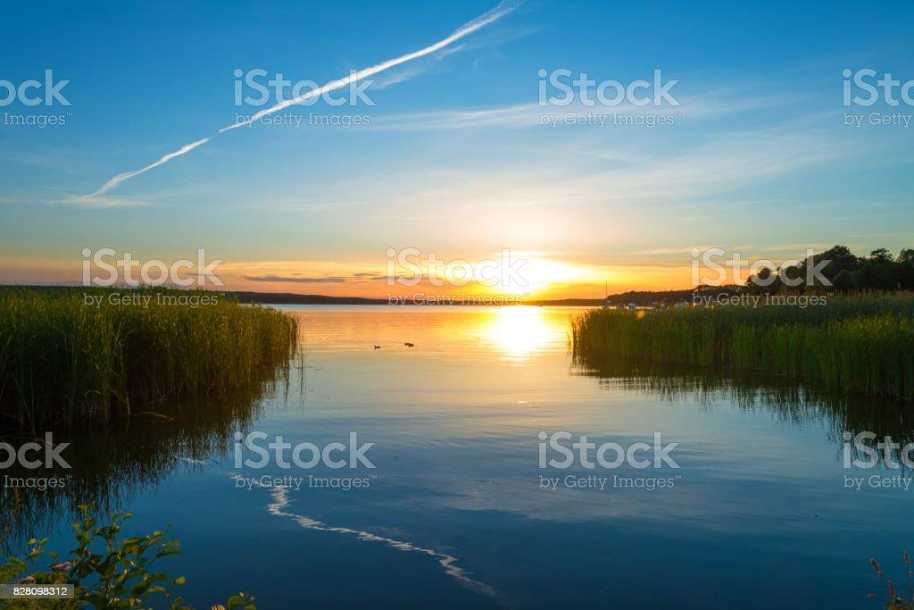 Sonnenuntergang am See mit Schilf Grass und blauer Himmel – Foto