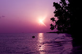 Beautiful maldivian colourful sunset with sea and foliage silhouette. Sky background colour - Ultra Violet, trend color of 2018