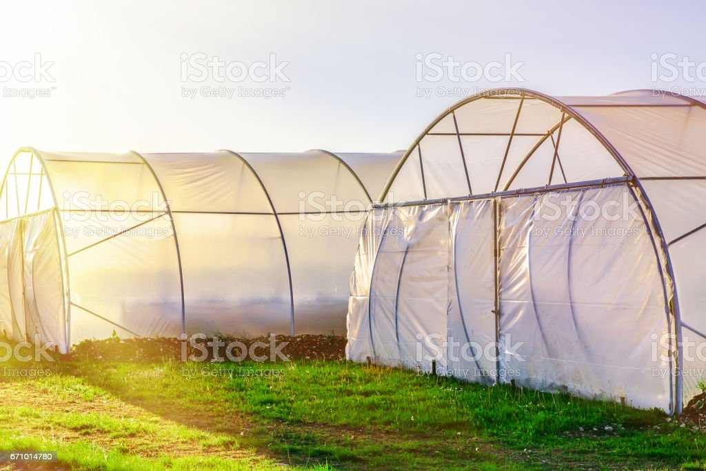 Sunset on outside view of greenhouse stock photo