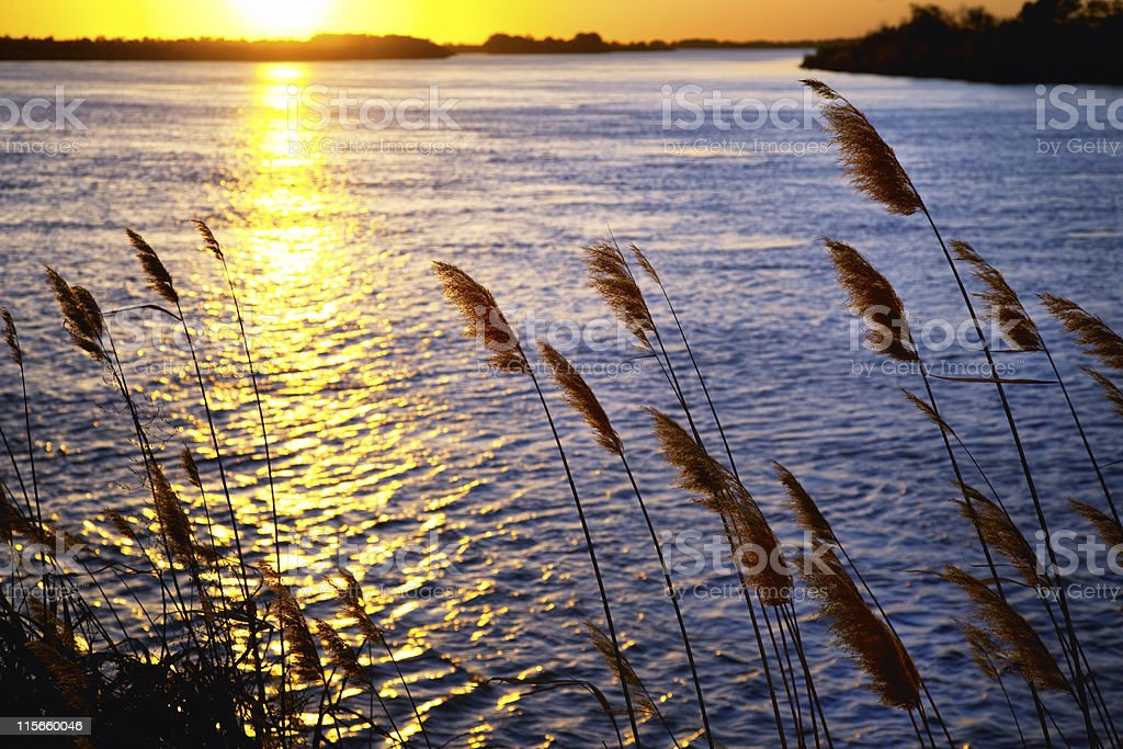 Sunset on river stock photo