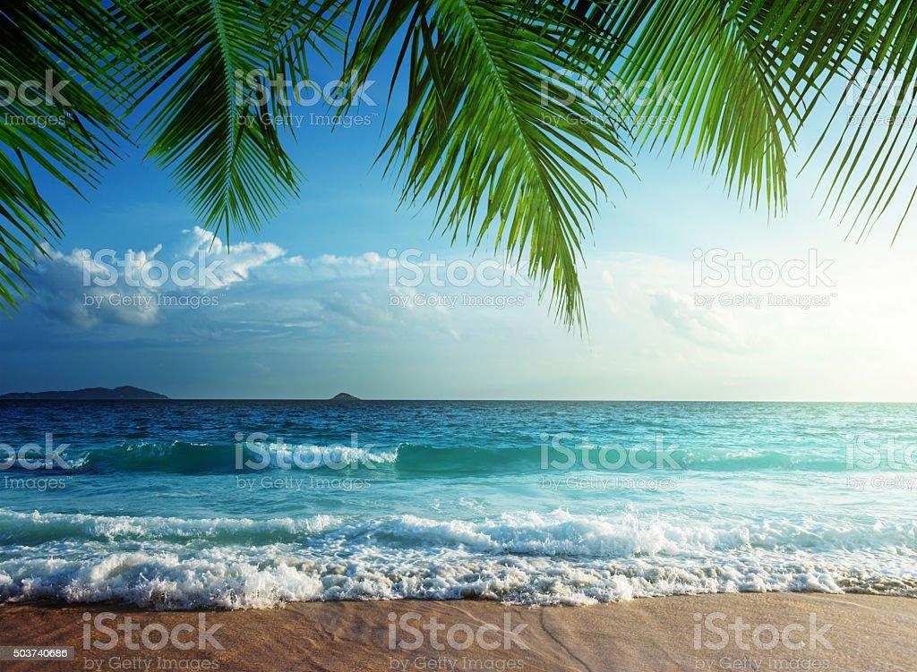 Sonnenuntergang am Strand auf den Seychellen – Foto