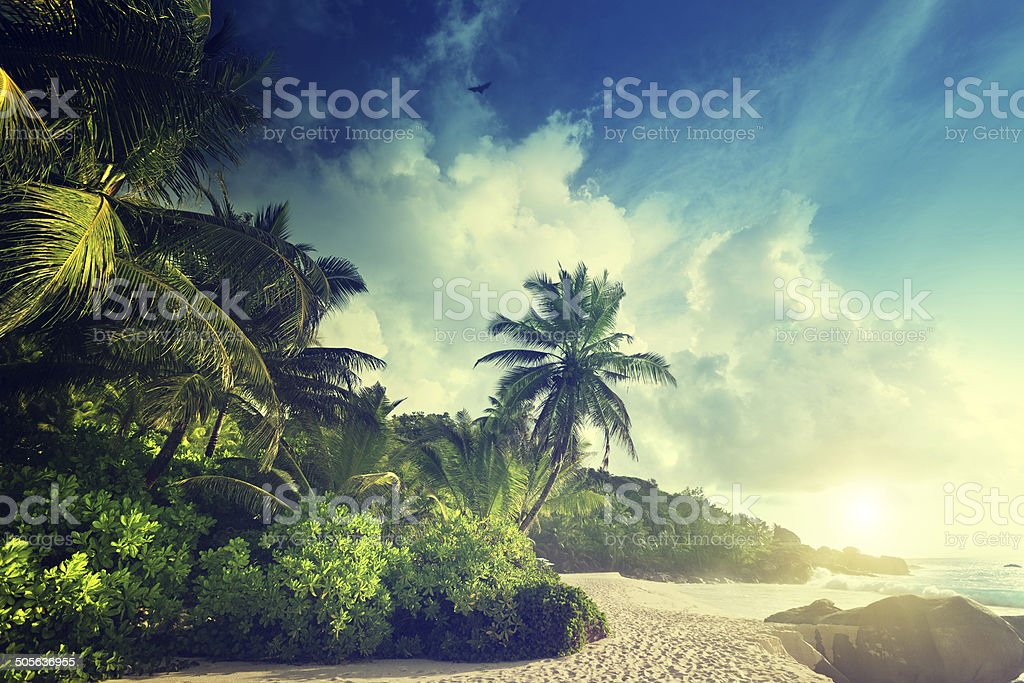 sunset on Seychelles beach stock photo