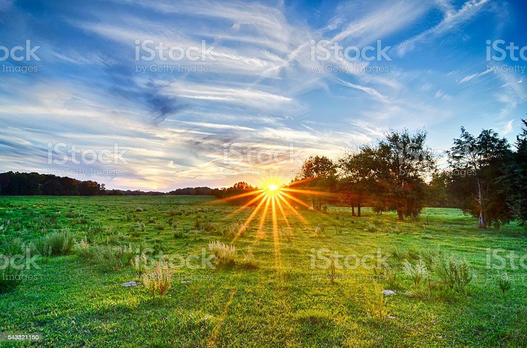 sunset on south carolina farm land stock photo