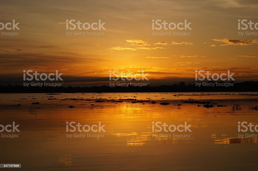 Sunset on the Amazon stock photo