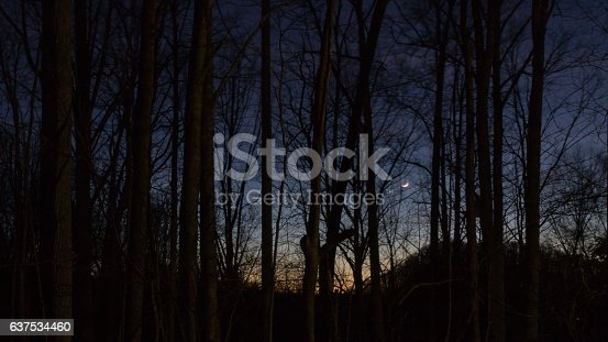 istock Sunset on the Balsam Mountain, North Carolina 637534460