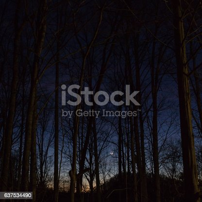 istock Sunset on the Balsam Mountain, North Carolina 637534490