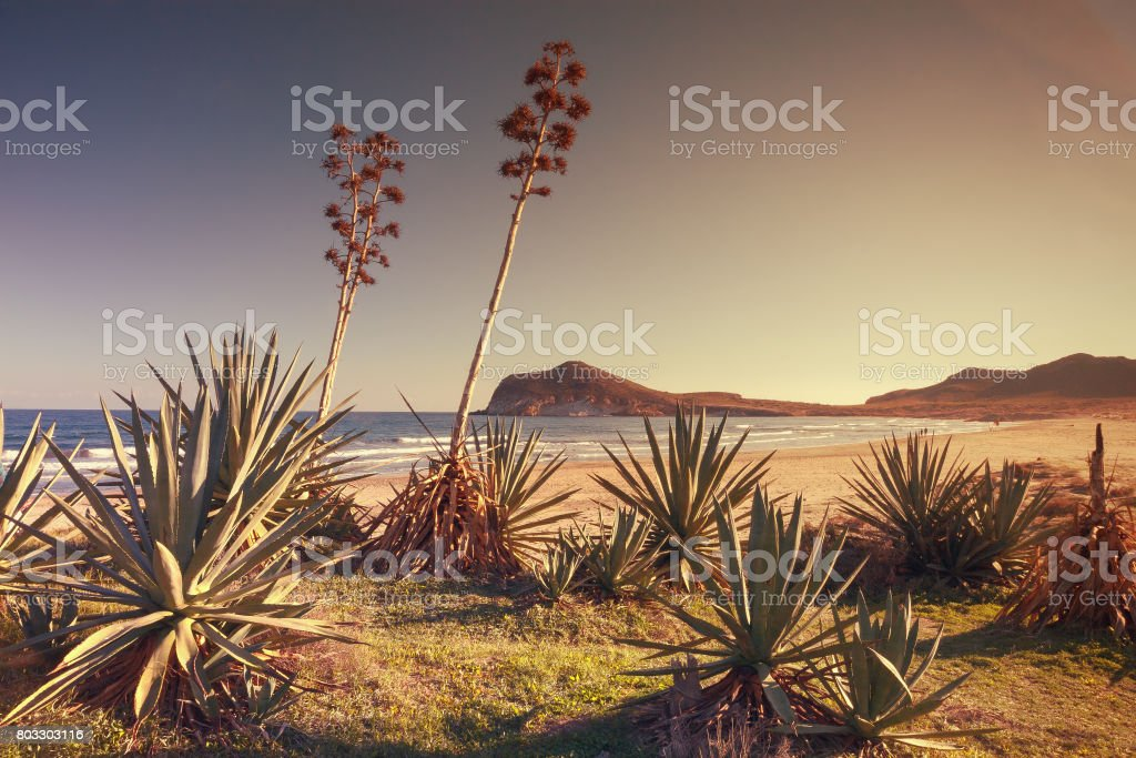 Sunset on the beach Genoveses in the Natural Park of Cabo de Gata, Almeria, Spain stock photo