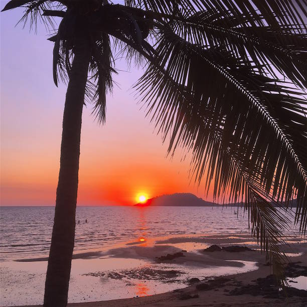 sunset on the beach in nosy be island with palm and two people couple - italiansight foto e immagini stock