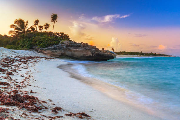 sunset on the beach of playa del carmen at caribbean sea - playa del carmen stock photos and pictures