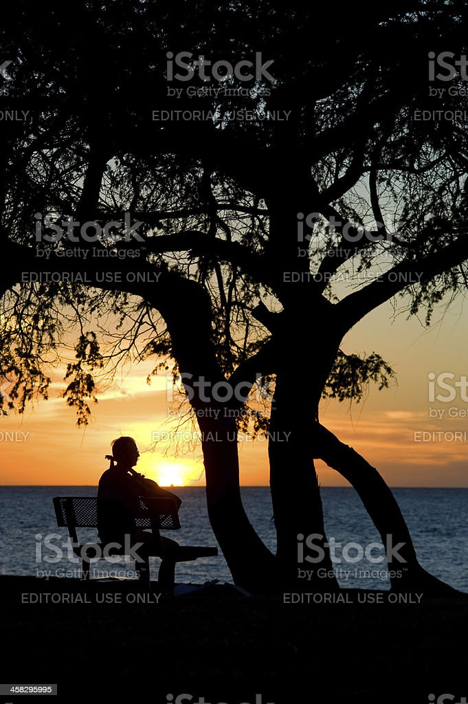 Sunset on the Beach royalty-free stock photo