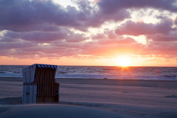 sunset cup coral am strand - urlaub norderney stock-fotos und bilder