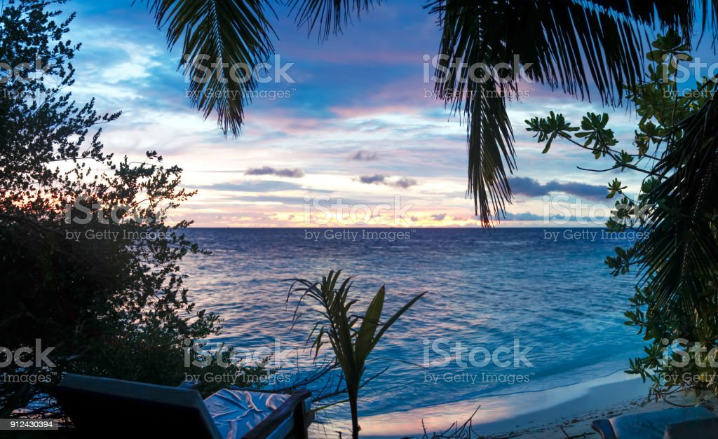 Sunset on the beach with a lot of plants stock photo