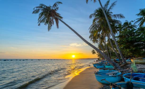 Sonnenuntergang am Strand mit gekippten Kokospalmen, langen Sandstränden und schönem goldenen Himmel – Foto