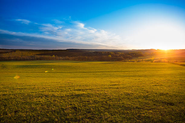 Sunset on the field. stock photo