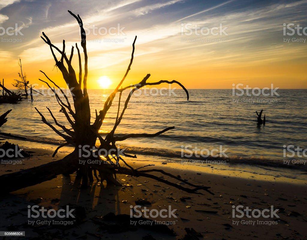 Sunset on the Gulf stock photo