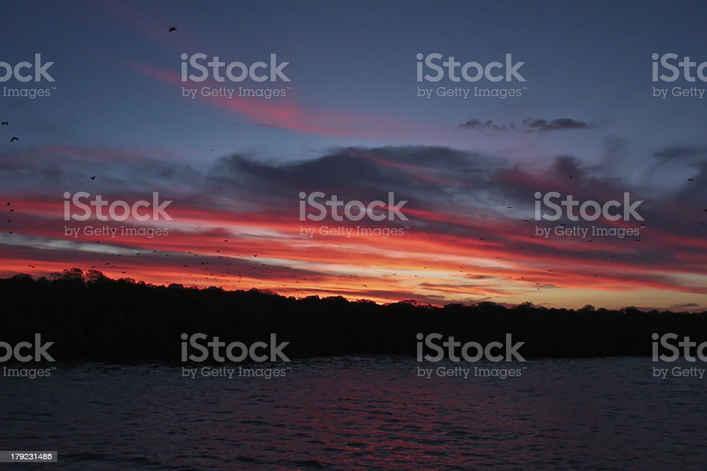 Sunset on the sea in Florence royalty-free stock photo