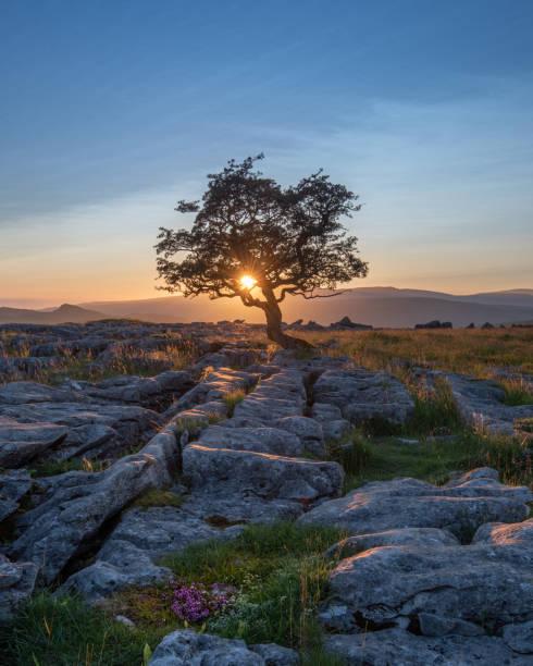 Por do sol nos Dales de Yorkshire - foto de acervo