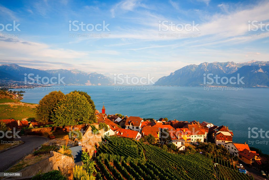 Sunset on vineyards  over lake Leman (lake of Geneva), Switzerla stock photo