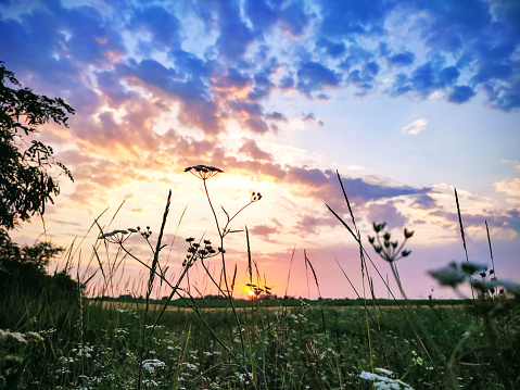 Beautiful sunset or sunrise in field with dramatic cloudy sky