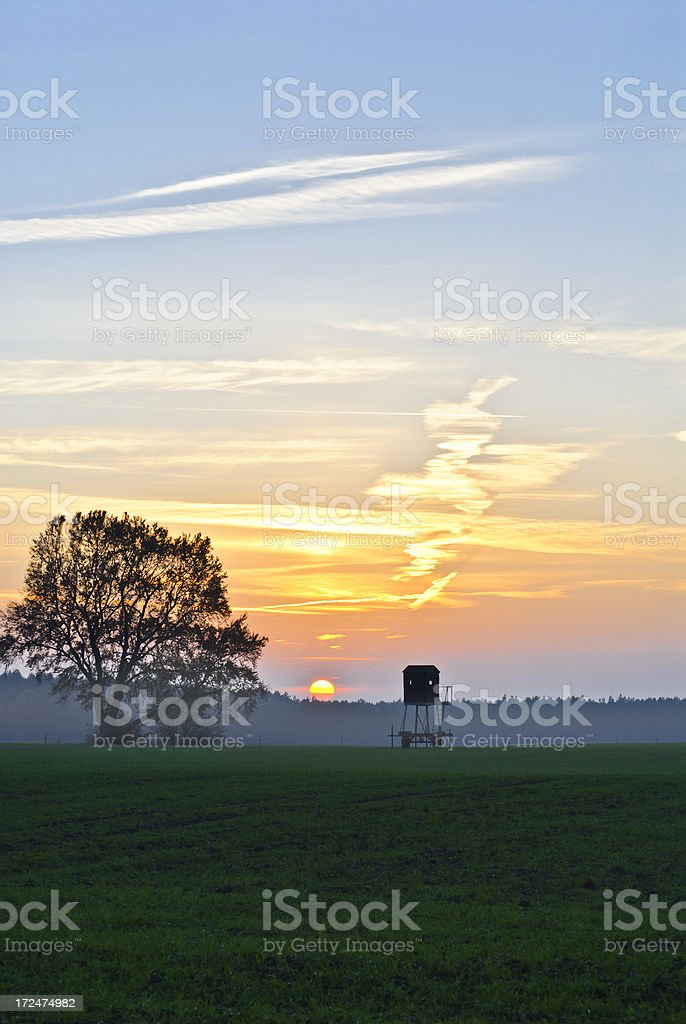 Sunset over a field stock photo