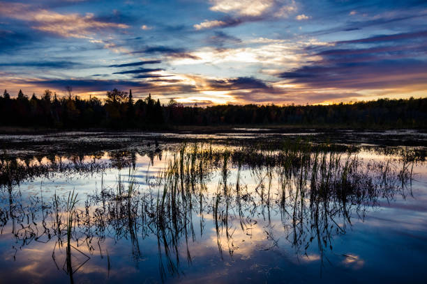 Sunset over a marsh stock photo