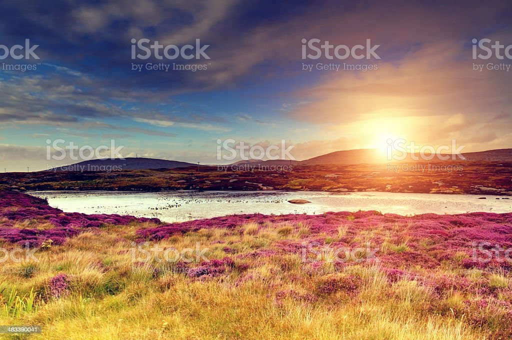 Sunset over a moorland stock photo