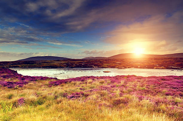 Sunset over a moorland​​​ foto