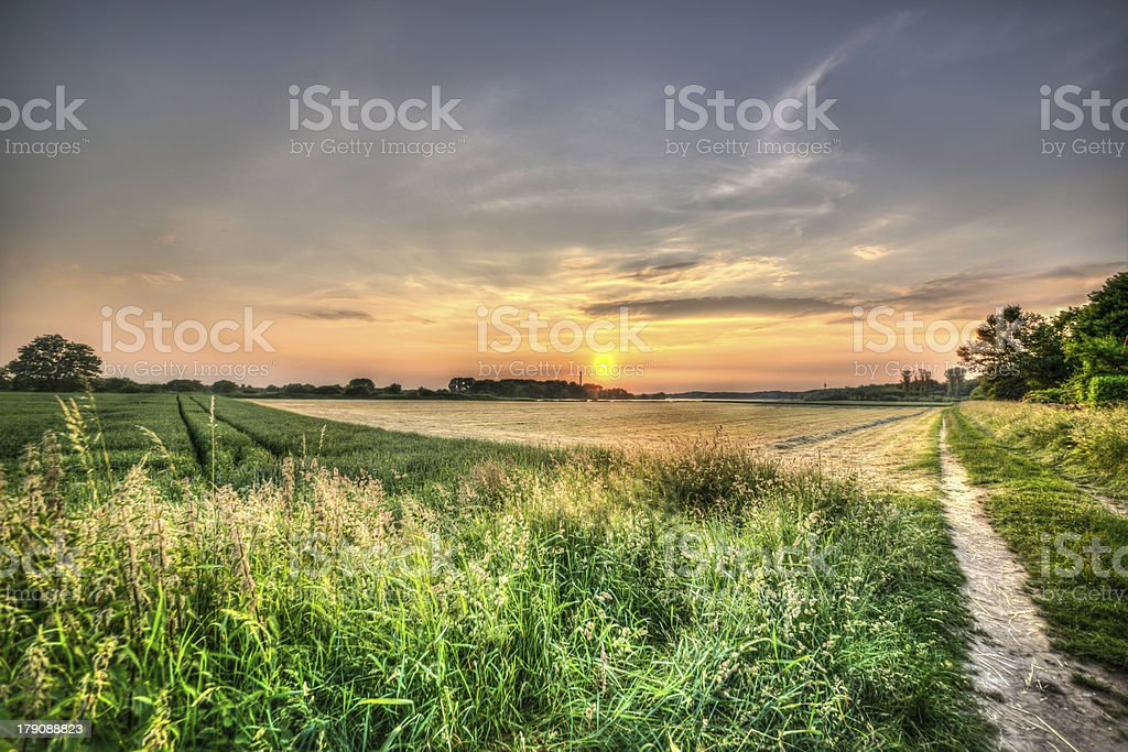 Sunset over a Rhine meadow near Düsseldorf (HDR) royalty-free stock photo