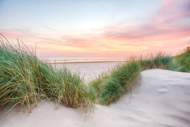 solnedgång över en mycket lugn strand - sanddyn bildbanksfoton och bilder