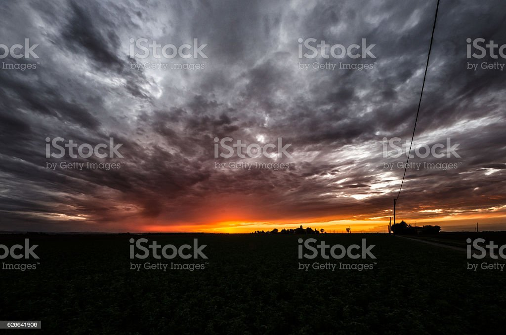Sunset over agricultural green field - August 2016 stock photo