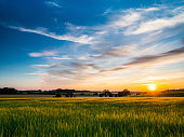 istock Sunset over arable farmland in Barrow Suffolk England 978432830