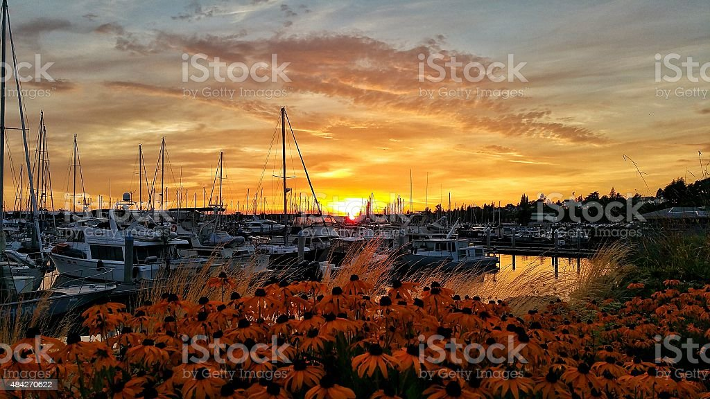 Sunset over Bellingham Marina stock photo