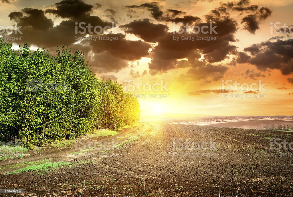 Sunset over black ploughed royalty-free stock photo