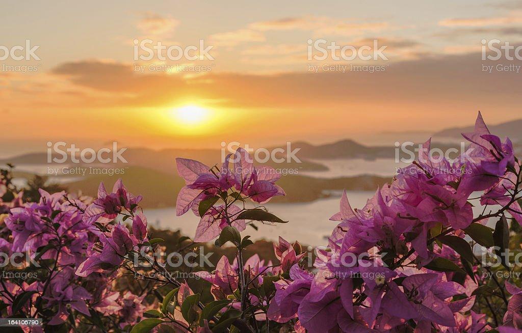 Sunset over Charlotte Amalie St Thomas stock photo