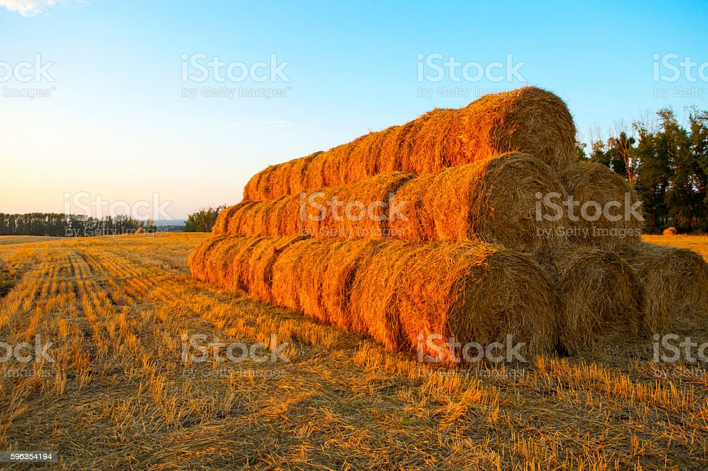 Sunset over farm field with hay bales royalty-free stock photo