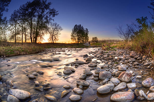 sunset over fish creek provincial park in calgary - provincial park stock photos and pictures