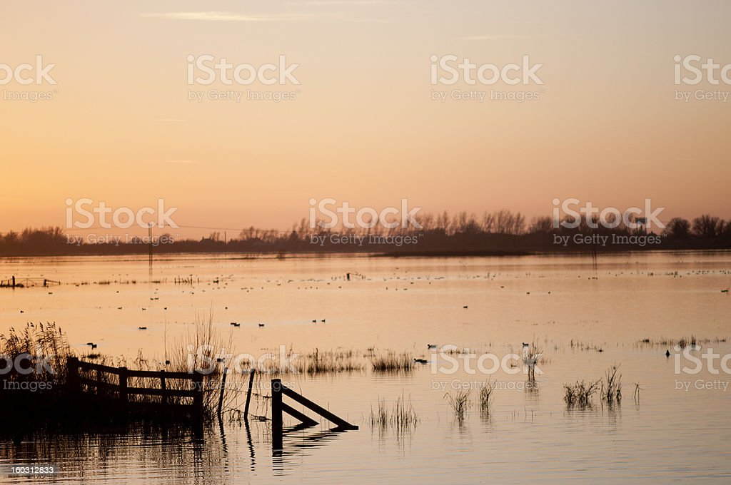 Sunset over flooded wetlands. royalty-free stock photo