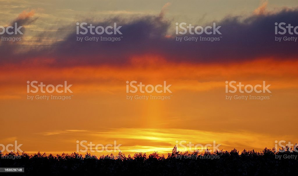 Sunset over forest royalty-free stock photo