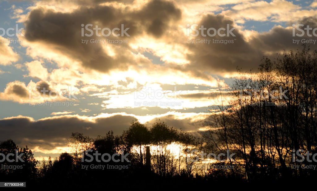 Sunset over forest. royalty-free stock photo