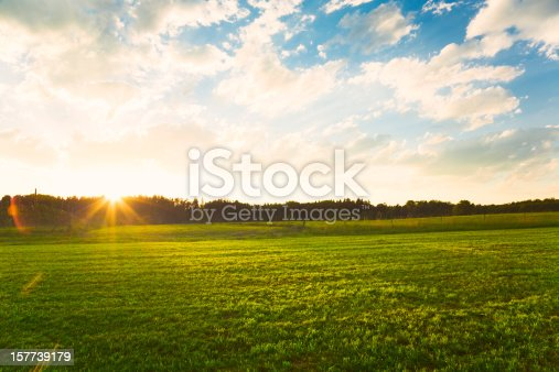 Sunset over green meadow