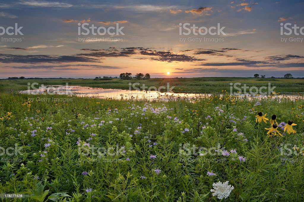 Sunset over Illinois stock photo