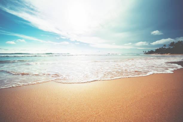 Sunset over indian ocean picture id810634774?b=1&k=6&m=810634774&s=612x612&w=0&h=t6i0ctuof izfgynrulbiro1blvg9gvadgd0lojbql8=