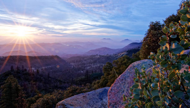Sunset over Kings Canyon National Park with foliage and stones stock photo