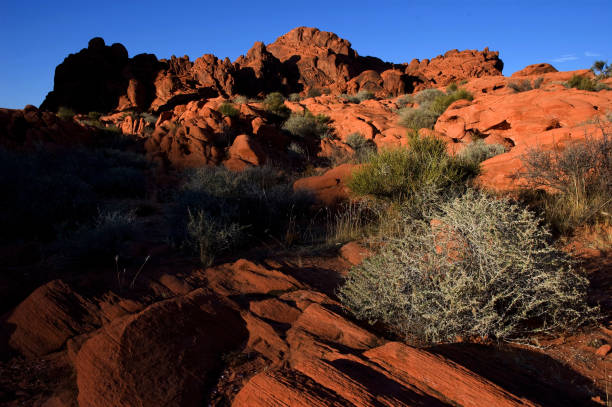 Sunset over red rocks at Valley of Fire, Nevada stock photo